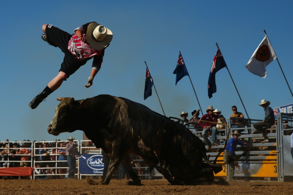Enthusiasts Enjoy The Deniliquin Ute Muster