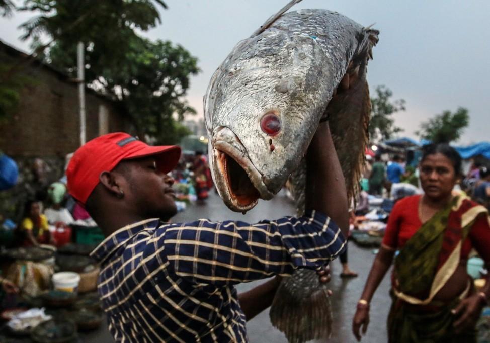 Indian fish market in Bhayander