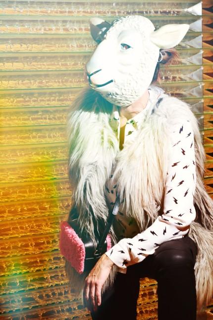Fashion-Zoo