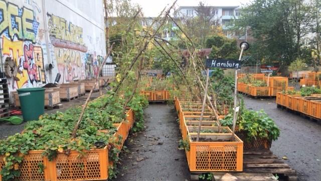 Gartendeck