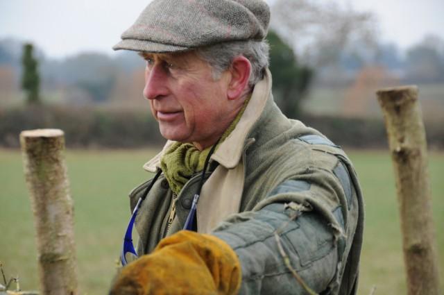Der Prinz of Wales ist sich auch für Landarbeit nicht zu schade.