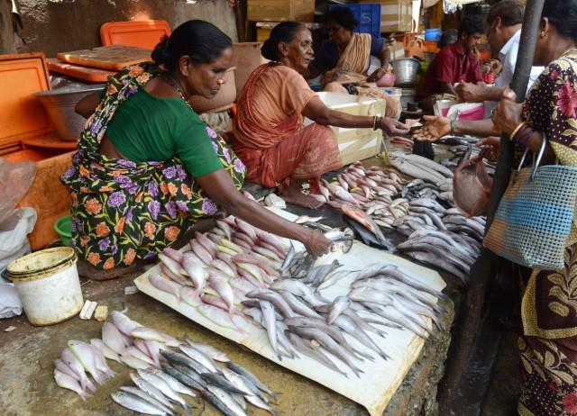Indian women sells fish at a fish market in Chennai