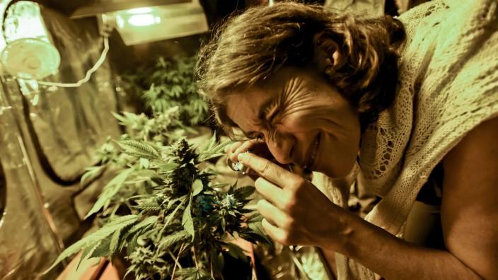 Uruguay: Die erste Marihuana-Messe Uruguays fand Ende 2014 in Montevideo statt - mit Workshops, Vorträgen und Verkaufsständen.