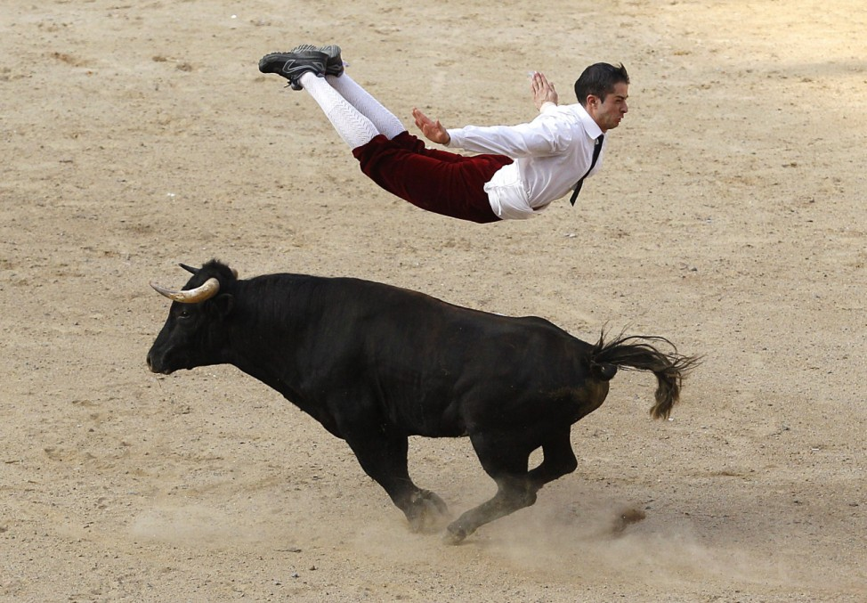 A Spanish recortador jumps over a bull during a show in Cali