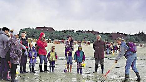 öhr-strand; föhrtouristik