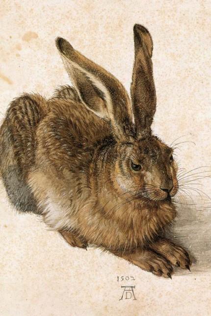 "Wiener Albertina-Chef muss Dürers ´Hasen"" zurückholen"
