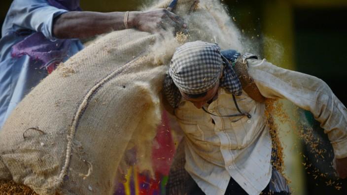 Philosoph über globale Gerechtigkeit: Ein indischer Arbeiter schleppt einen Sack Reis: Nach der UN-Definition von Hunger könnte er wohl kaum so hart arbeiten.