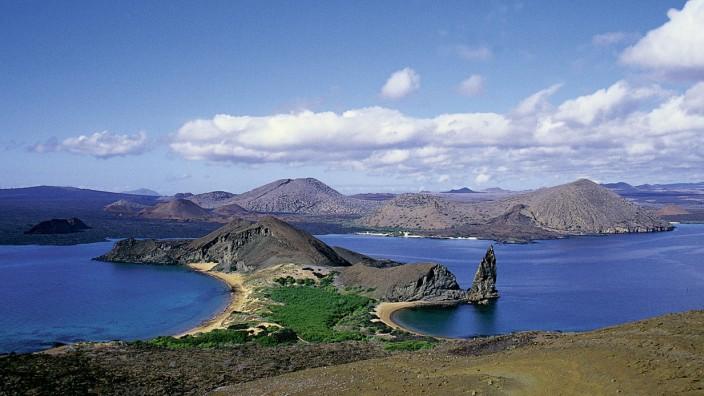 Wo die Tiere Chef sind: Das Naturparadies der Galápagos-Inseln