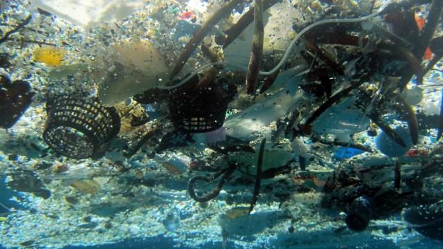 Plastikmüll: Schätzungen zufolge belasten 140 Millionen Tonnen Plastik die Weltmeere. Die größten Mengen davon sind winzige Partikel, mit dem bloßen Auge kaum zu sehen.