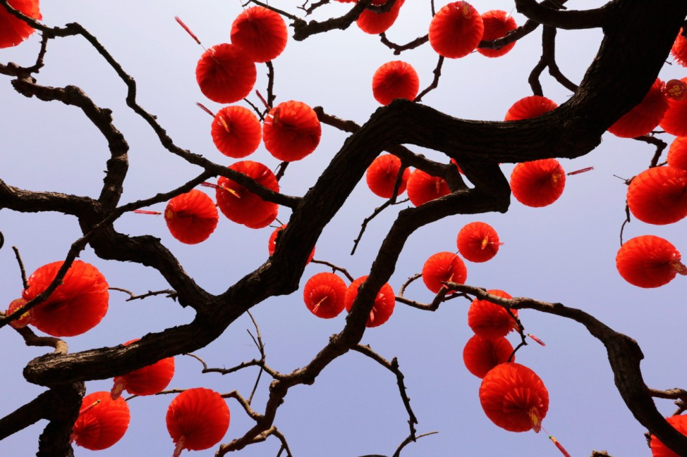 Red lantern decorations are installed on a tree for the upcoming Spring Festival celebrations in Beijing; Red lantern decorations are installed on a tree for the upcoming Spring Festival celebrations in Beijing