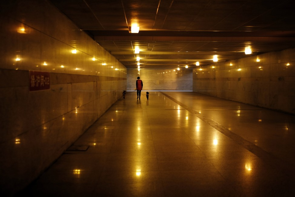 Woman walks two dogs along an underpass in downtown Shanghai