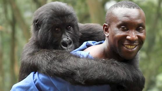 """Dokumentarfilm """"Virunga"""", Netflix"""