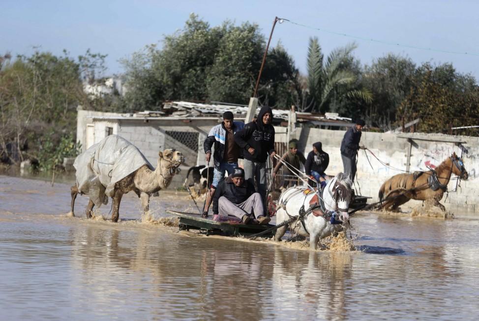 Palestinians evacuate their animals in Al-Moghraga after it was flooded by rain water, near central Gaza Strip