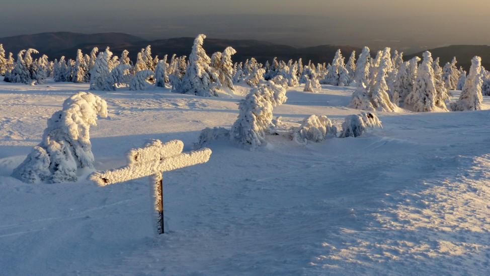 Sonnenaufgang auf frostigem Brocken