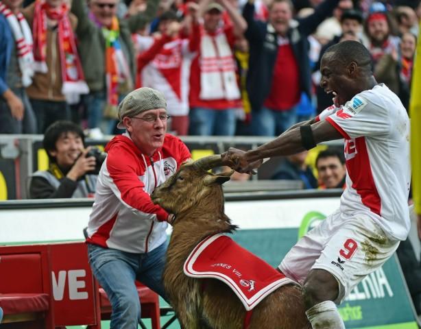 08 03 2015 xjhx Fussball 1 Bundesliga 1 FC Koeln Eintracht Frankfurt v l Anthony Ujah 1 FC