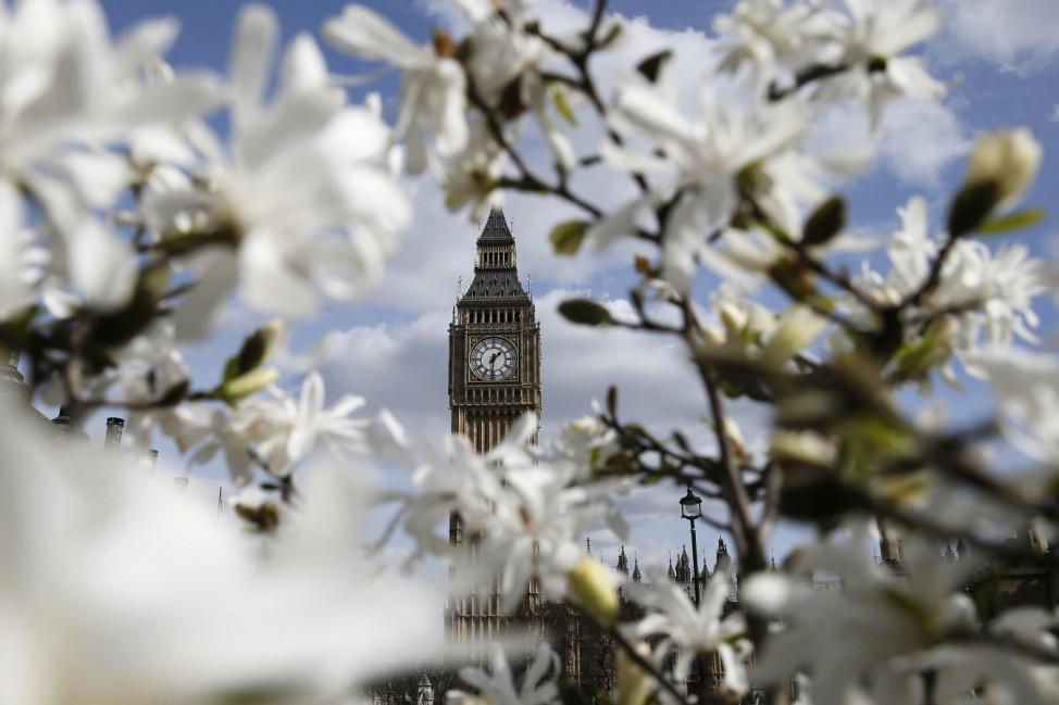 The Big Ben clock tower is seen through blooming flowers in central London