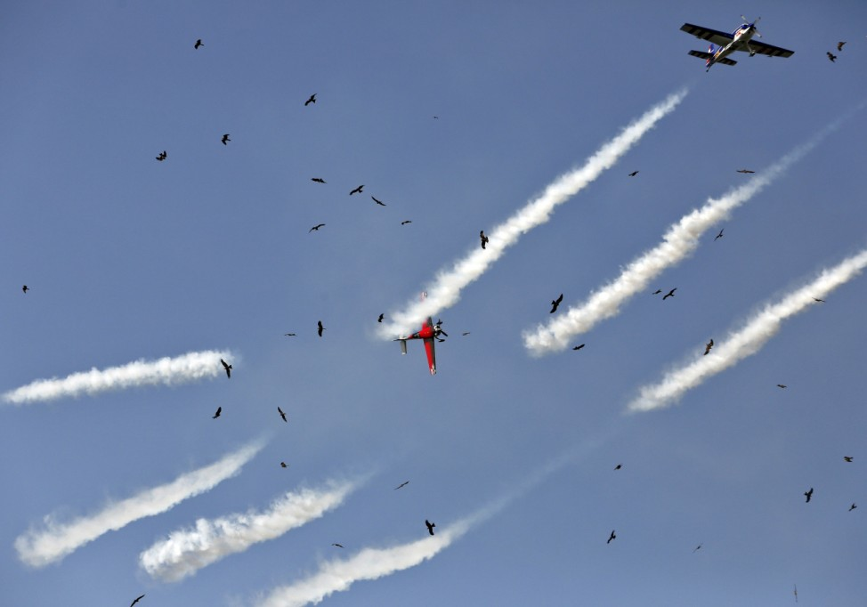 Global Stars aerobatic team performs as birds fly during the four-day-long Gujarat Aero Conclave in Ahmedabad
