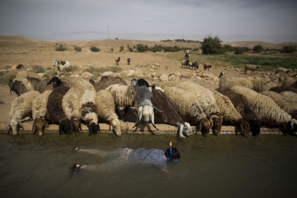 Israelis enjoy water spring at the Jordan Valley