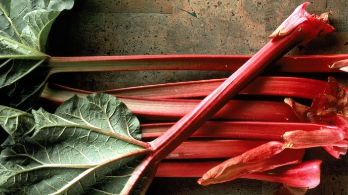 Stalks of fresh rhubarb