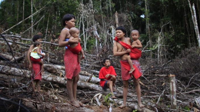 Amazonas-Volk: Die Proben einiger Yanomami aus dem Amazonasgebiet lieferten Forschern Auskunft über die Artenvielfalt von Bakterien.