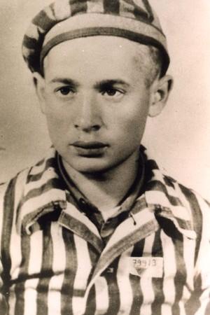 Shalom Stamberg