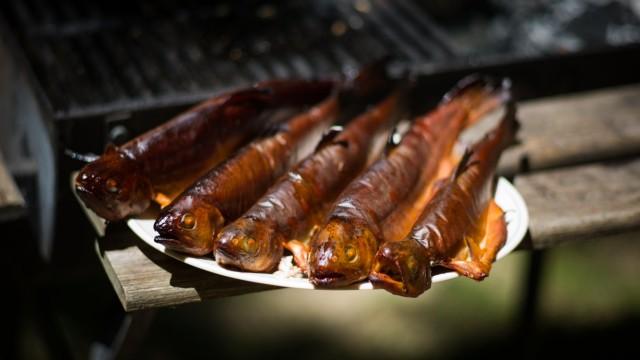 Ein geräucherter Fisch vom Grill