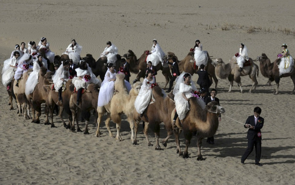 Newly-wed grooms lead camels carrying their brides during a mass wedding in a desert at a tourism area containing a populus euphratica reserve in Yuli county