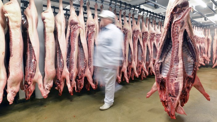 Sides of pork in cold store of a slaughterhouse model released Symbolfoto property released PUBLICAT