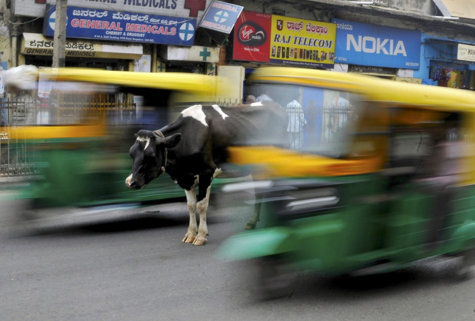 A cow stands in the middle of a busy road as auto-rickshaws pass by in Bengaluru