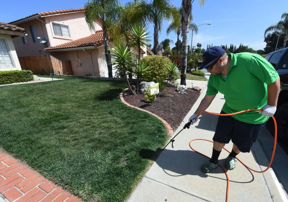 Residents in drought stricken California resort to painting lawn
