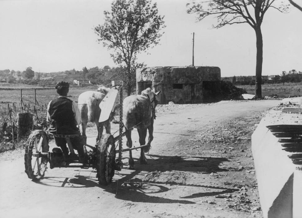 Französischer Bauer mit Pferdegespann, im Hintergrund ein zerschossener Bunker, 1940