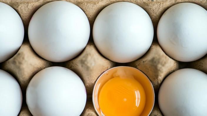 Scharf soll bei Sondersitzung über Bayern-Ei berichten