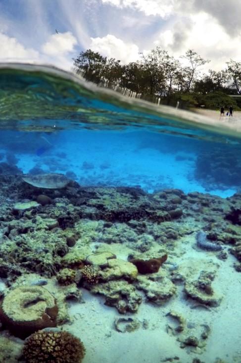 Unesco-Welterbe Great Barrrier Reef in Australien