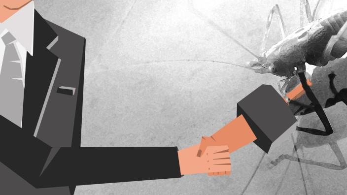 Private-Equity-Firmen: Gierige Heuschrecken? So einfach ist das auch nicht.