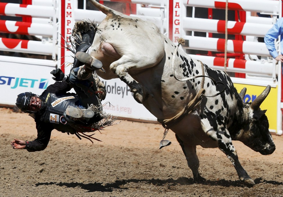 Besplug gets tossed off the bull 'Teen Spirit' in the bull riding event during the Calgary Stampede rodeo in Calgary