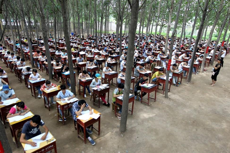 Exam In Poplar Woods
