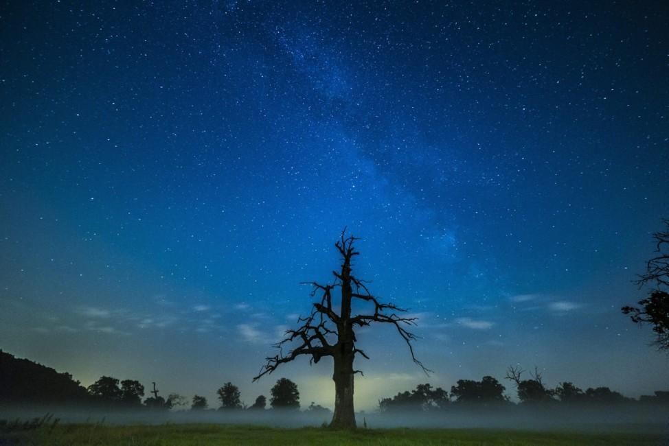 Milky Way seen in Poland