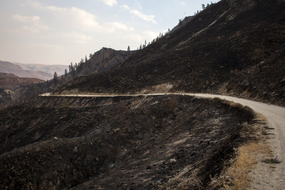 Gorge Road winds through an area scorched by the Chelan Complex fire in Chelan, Washington