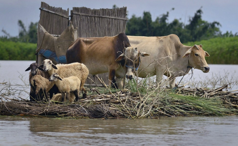 Floods in India's north-eastern state of Assam