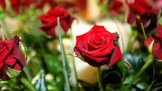 Geschichte des Valentinstages