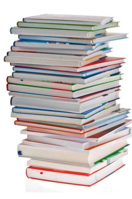 Digitale Schule: Deutsche Kinder schleppen immer noch viele Kilo Schulbücher in ihrem Ranzen herum - dabei könnte es auch leichter gehen.