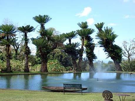 Reisekalender-Januar: Guadelupe, dpa