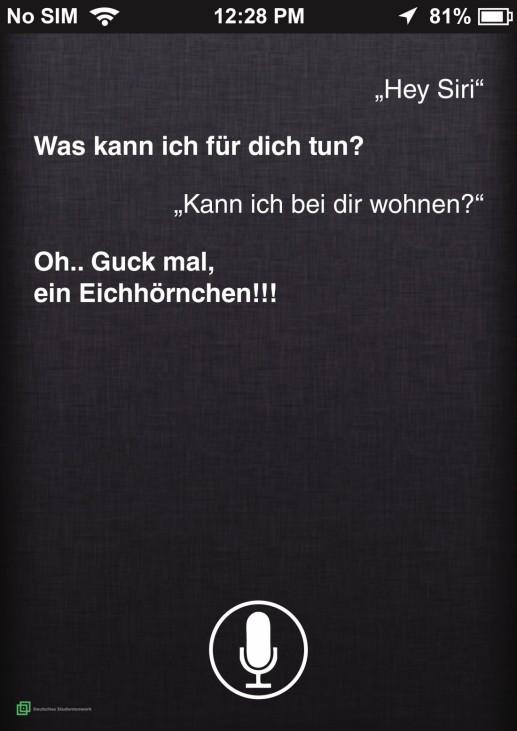 """Hey Siri """