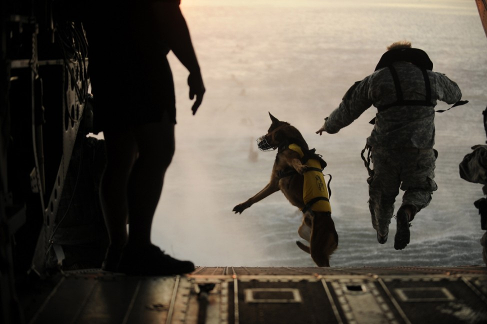 U.S. Army soldier with the 10th Special Forces Group and his military working dog jump off the ramp of a CH-47 Chinook helicopter