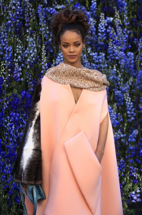 Paris Fashion Christian Dior Photocall; rihanna dior Fashion Show Spring-Summer 2016