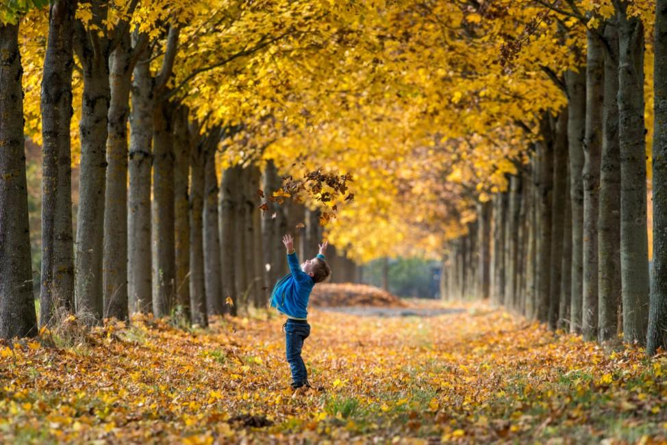 Herbst in Niederbayern