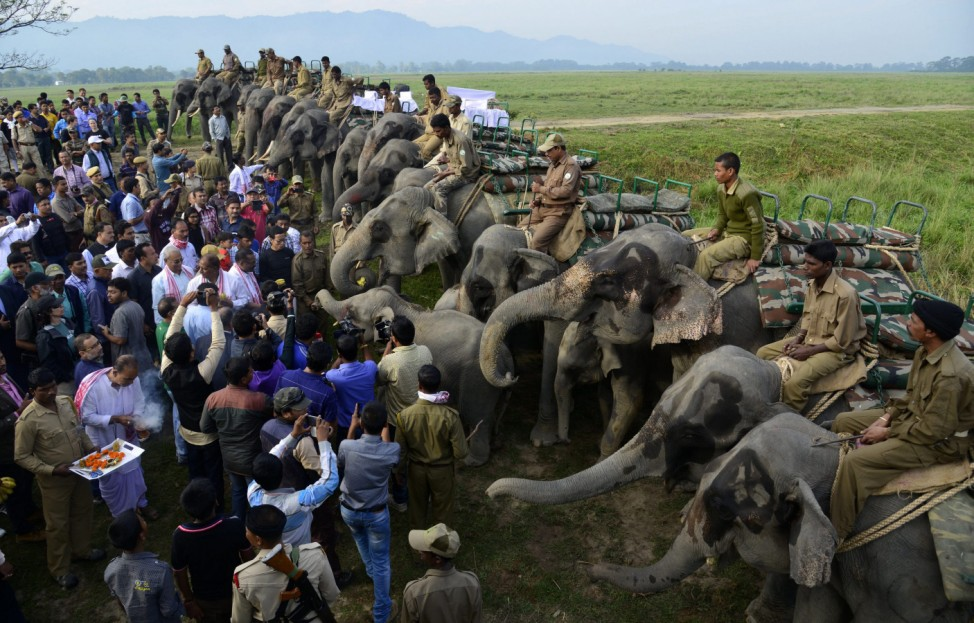 First day of reopening of Kaziranga National park in Assam, India