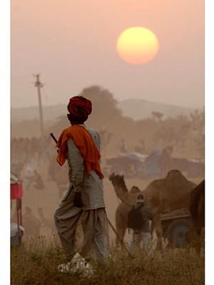 Rajasthan, AFP