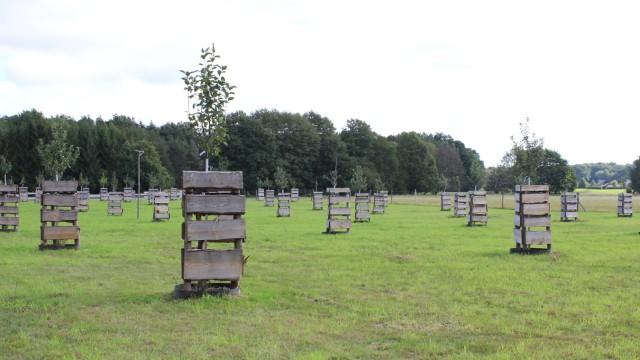 Naturschutz: Weil ein Bauer diese Obstbäume in Brandenburg gepflanzt hat, darf anderswo eine Brücke gebaut werden.