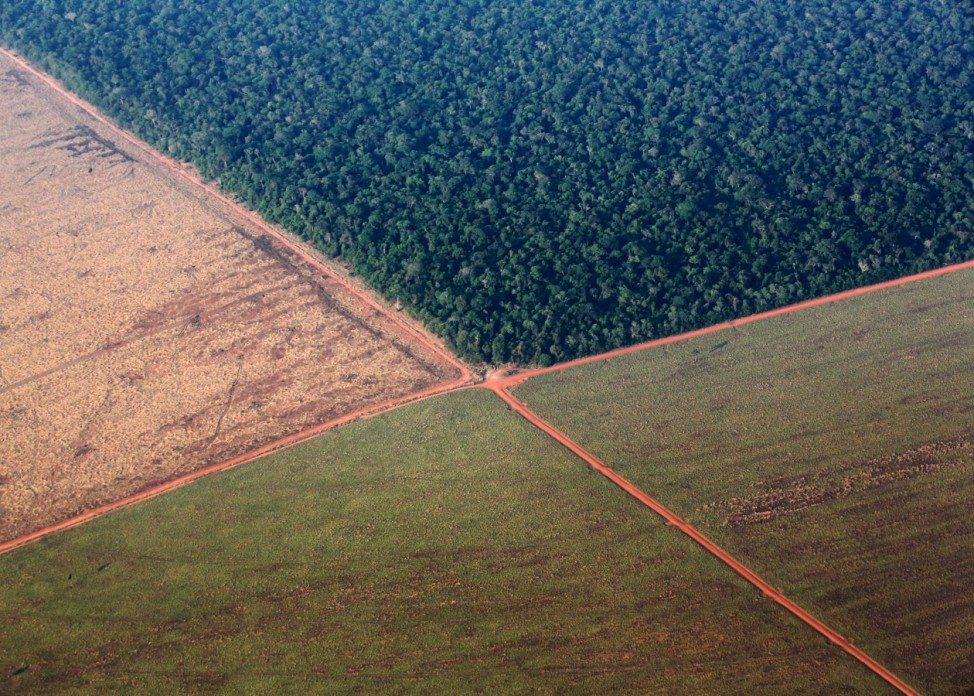 The Amazon rain forest, bordered by deforested land prepared for the planting of soybeans, in pictured in this aerial photo taken over Mato Grosso state in western Brazil